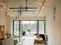 開店当初緑カフェ