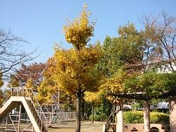 西三田団地6街区公園