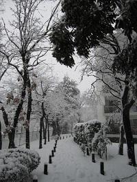西三田団地冬